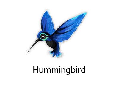 Hummingbird Google Algorithm Updates